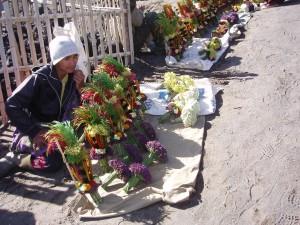 pedagang bunga bromo